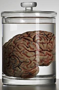 A-brain-in-a-speciman-jar-014 copy